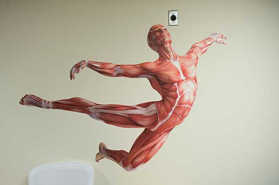 anatomyModelInFlight