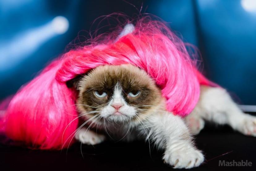 grumpy-cat-nicki-minaj