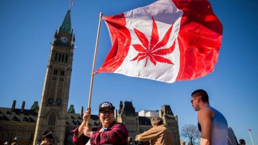 canadianweed